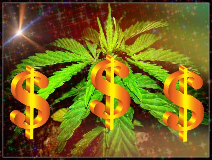 Canna-Lance-Cannabis-Is-Worth-Billions