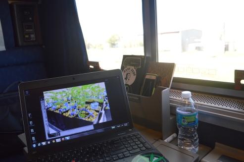 working Amtrak